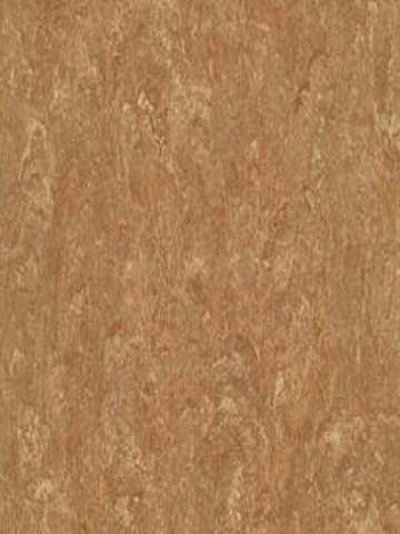 Armstrong Marmorette LPX  Linoleum leather brown DLW,...