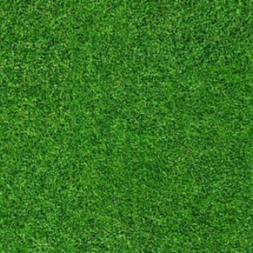 Forbo Flotex Teppichboden Grass Vision Image Objekt wi000369