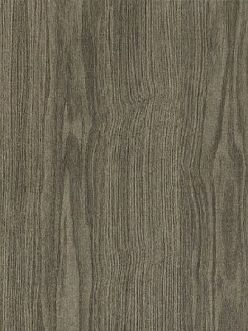 Amtico Access Vinyl Designbelag Winter Oak Wood...