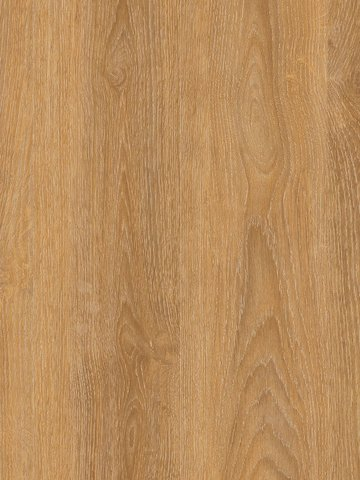 wCPW4011-55 Project Floors Click Collection  PW4011...