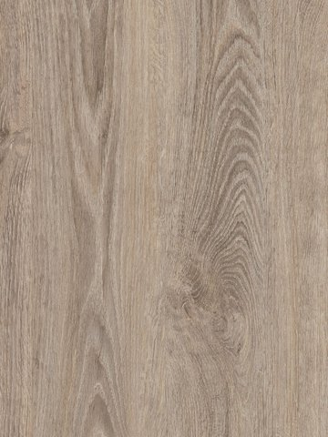 wCPW4010-55 Project Floors Click Collection  PW4010...