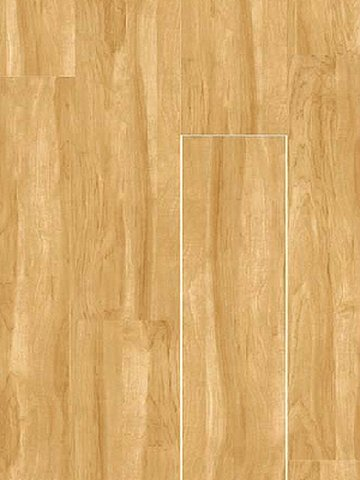 wPW1905L3-aktion Project Floors Loose Lay 30...