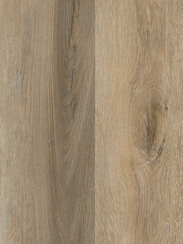 wCPW4100-30 Project Floors Click Collection  PW4100...