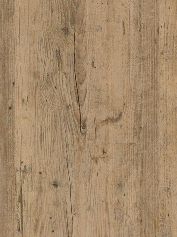 wCPW4140-55 Project Floors Click Collection  PW4140...